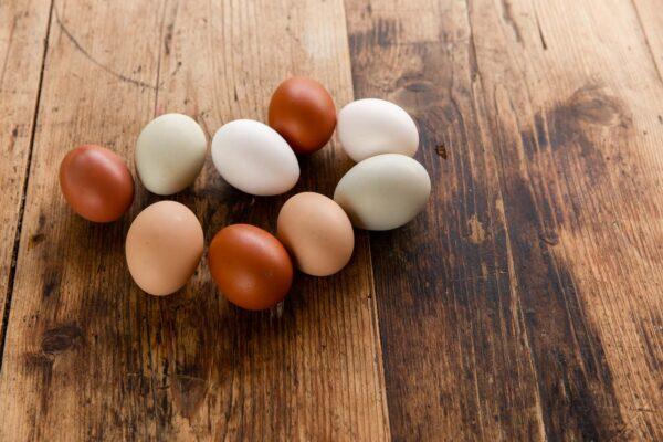 free range cornish penbugle eggs