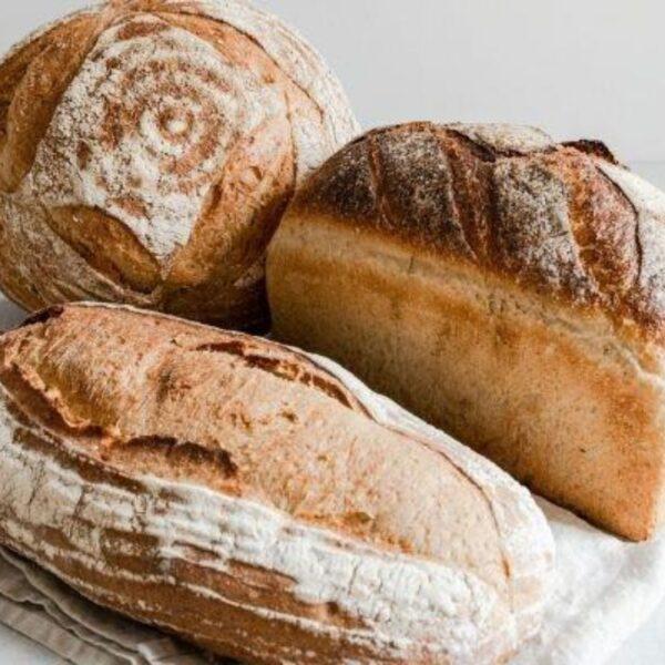 Baker toms large sourdough