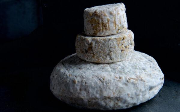 Helford Blue Cheese