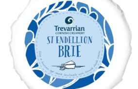 Trevarrian St Endellion Brie mini Truckle