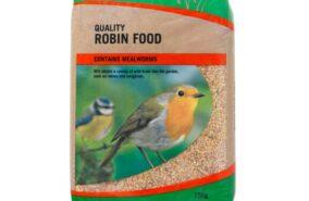 Robin and songbird bird feed
