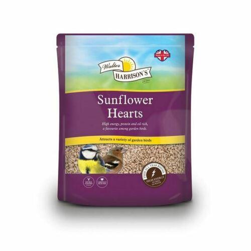 sunflower hearts for wild birds
