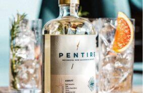 Pentire non alcoholic botanical spirit sold at baileys